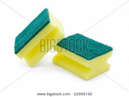 Group of yellow sponge
