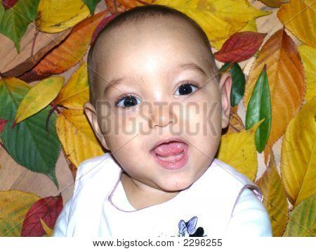 Authumn Baby