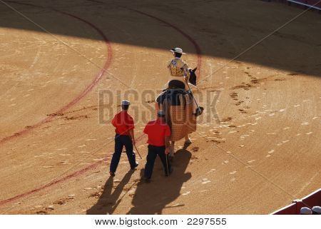 Picador In The Bullfighting Arena In Spain