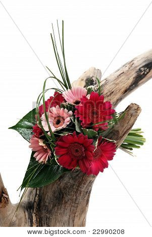 A Bunch Of Flowers On White On Tree Stump