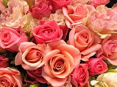 stock photo of rose flower  - close up shot of a very beautiful wedding bouquet with coral red and pink roses and pastel pink ranunculus flowers - JPG