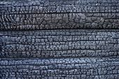 Burnt Logs Texture. Black Charred Wood Background poster