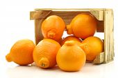picture of tangelo  - fresh and colorful  Minneola tangelo fruit in a wooden crate on a white background - JPG