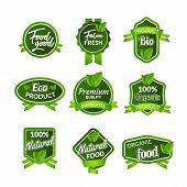 Organic Health Food Badge Seal Design. Natural Organic Food Sticker Set. Farm Product Market Signs I poster