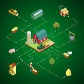 Natural Farming Isometric 3d Infographics. Agricultural Constructions And Machinery, Crop Harvesting poster