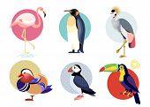 Birds Puffin, Mandarin Duck, Flamingos, Toucan, Penguin, Bird Secretary Isolated On White Background poster