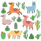 Cute Alpaca Lamas. Wildlife Vector Llama Characters. Wildlife Alpaca And Green Cactus Illustration poster