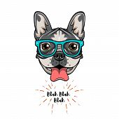 Hipster Geek French Bulldog. Dog Geek. Vector Illustration Isolated On White Background. poster