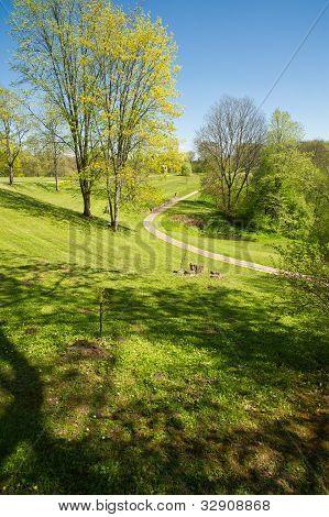 Footpath In Very Beautiful Park