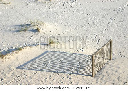 Fence & Shadows