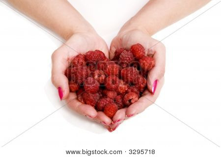 Whole Palms Of Raspberries