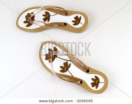 Flip-Flops 3