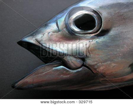 Tuna Face