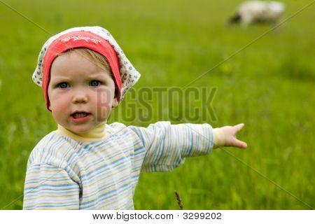 Baby In A Field