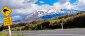 Kiwi Crossing road sign and volcano Ruapehu, NZ