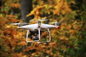 Flying Drone In Autumn Forest With Yellow Leaves poster