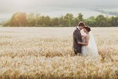 Wedding Couple In Wheat Field In Sunlight. Romantic Feelings At Sunset. Couple In Love poster