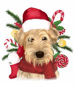 Soft Coated Wheaten Terrier With Long Haired Coat With Red Scarf And Christmas Hat. Digital Art Port poster