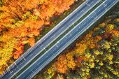 Aerial View Of Road In Beautiful Autumn Forest At Sunset. Colorful Landscape With Highway, Cars, Tre poster