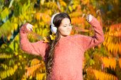 Feel The Vibe. Music For Autumn Mood. Listening Song. Enjoy Music Fall Day. Listening Audio Best Way poster