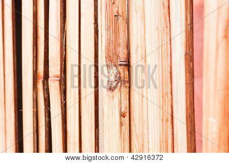 Beautiful Nature Bamboo Partition