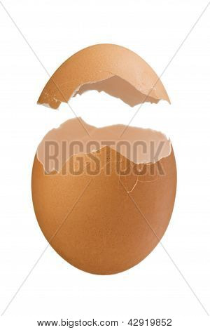 Eggshell Isolated On White Background
