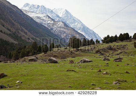 Mountain landscape. Ala-Archa, Kyrgyzstan