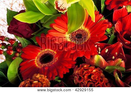 composition of rose, gerbera, orchid and anthurium