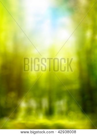 Abstract Forest Spring Green Background