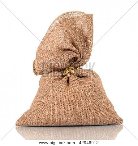 Full money bag, isolated on white background
