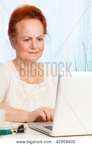 Senior Browsing Internet