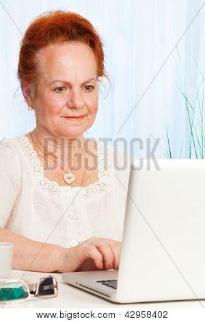 Senior Browsing Internet