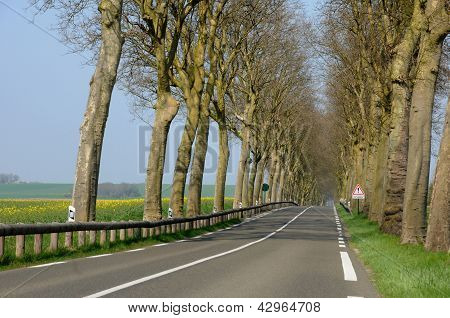 A Country Road In Val D Oise