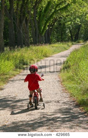 Boy Riding Along The Trees