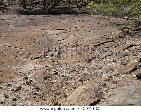 Hawaii Lava Field with Carvings