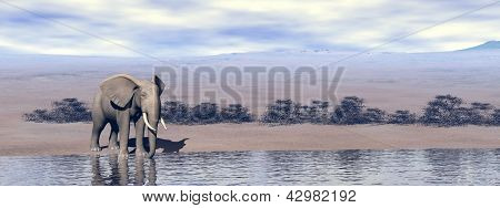 Elephant At The Water - 3D Render