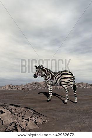 Zebra In The Desert - 3D Render