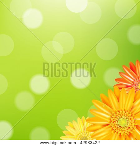 Green Nature Background With Yellow Gerbers With Gradient Mesh, Vector Illustration