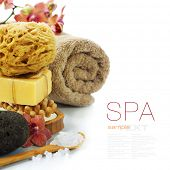 Spa and Wellness- bath brush, pumice stone, sponge, towel, orchid, sea salt and soap over white (wit
