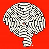 Постер, плакат: Удивительный лабиринт мозга