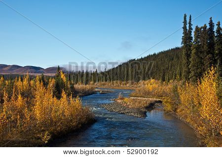Denali's Sanctuary River in Autumn
