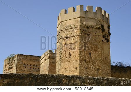 Towers Of The Castle Of Alcala