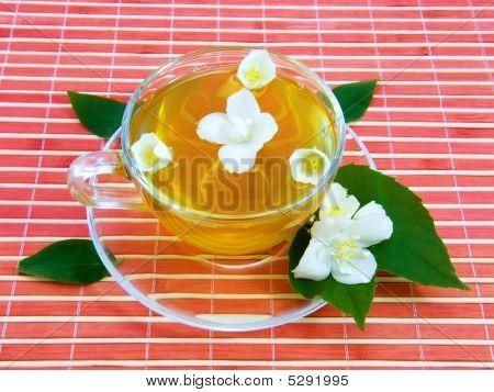 Transparent cup with jasmin tea