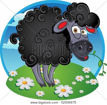 Black dark sheep with blade of grass on color background