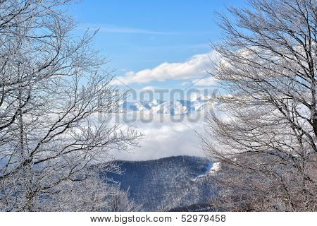 Winter on the mountain from Europe