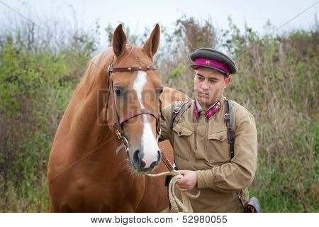 Infantry Sergeant And Horse