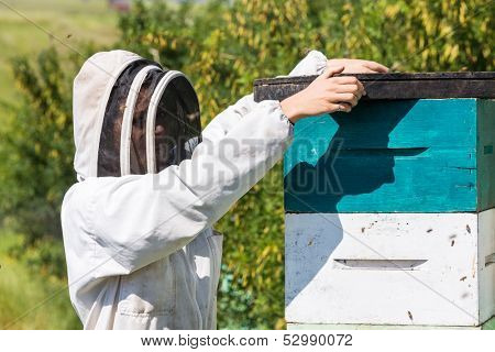 Side view of beekeeper placing fume board on hive