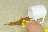 stock photo of fallen  - A hand with cloth cleaning a coffee stain from carpet - JPG