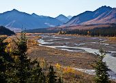 stock photo of denali national park  - Denali National Park - JPG