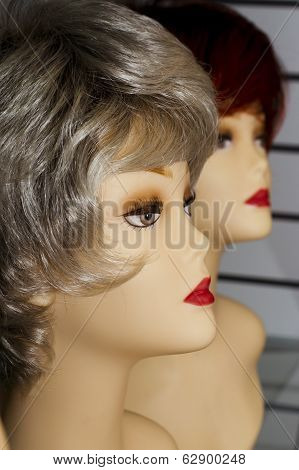 Mannequin With A Wig